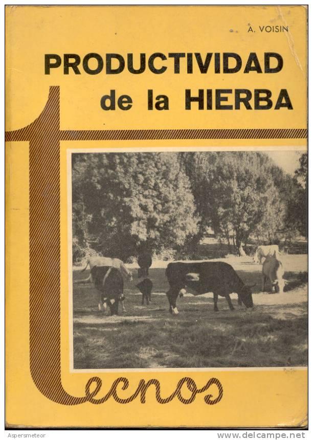 PRODUCTIVIDAD DE LA HIERBA. ANDRE VOISIN. AGRONOMIA. VETERINARIA. 499 PAGINAS CUAC - Sciences Manuelles