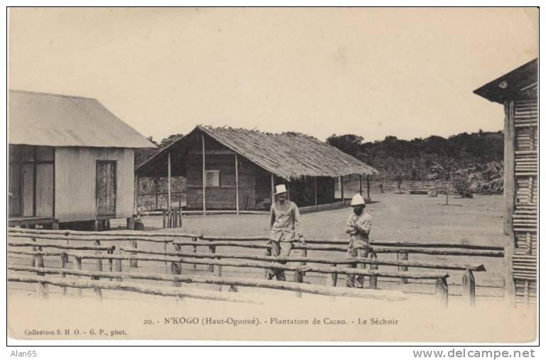 N´Kogo Haut Ogooue Upper Ogooue Gabon Cacao Plantation Colonial Times, French Colony, On C1900s/10s Vintage Postcard - Gabon