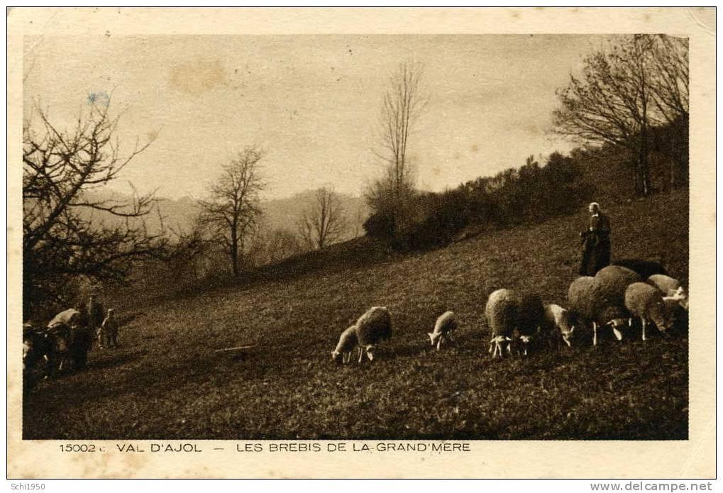 CA - 88 - VOSGES - Val D´Ajol - Les Brebis De La Grand'Mère - 1931 - Non Classés