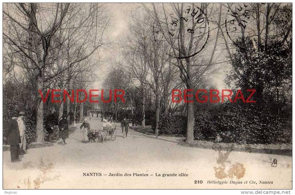 NANTES     JARDIN DES PLANTES     ATTELAGE DE CHEVRES - Nantes