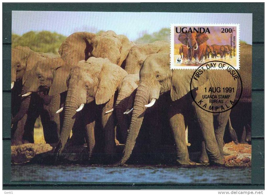 "Uganda 1991 MK,Maxicart  WWF Mit Mi.Nr.962 "" Afrikanischer Elefant,African Elephant ""Sonderstempel Used - Elephants"