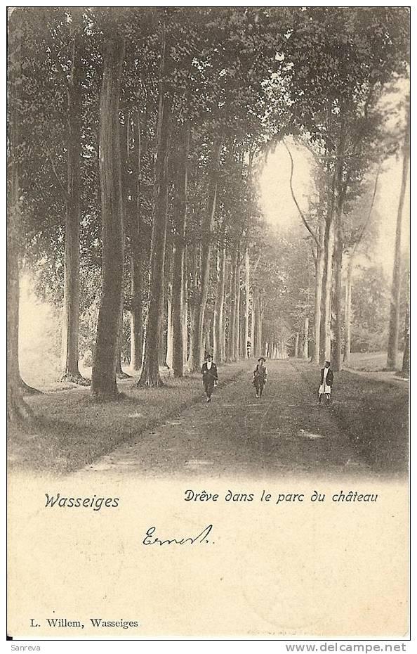 Wasseiges. Drêve Dans Le Parc Du Château - Wasseiges