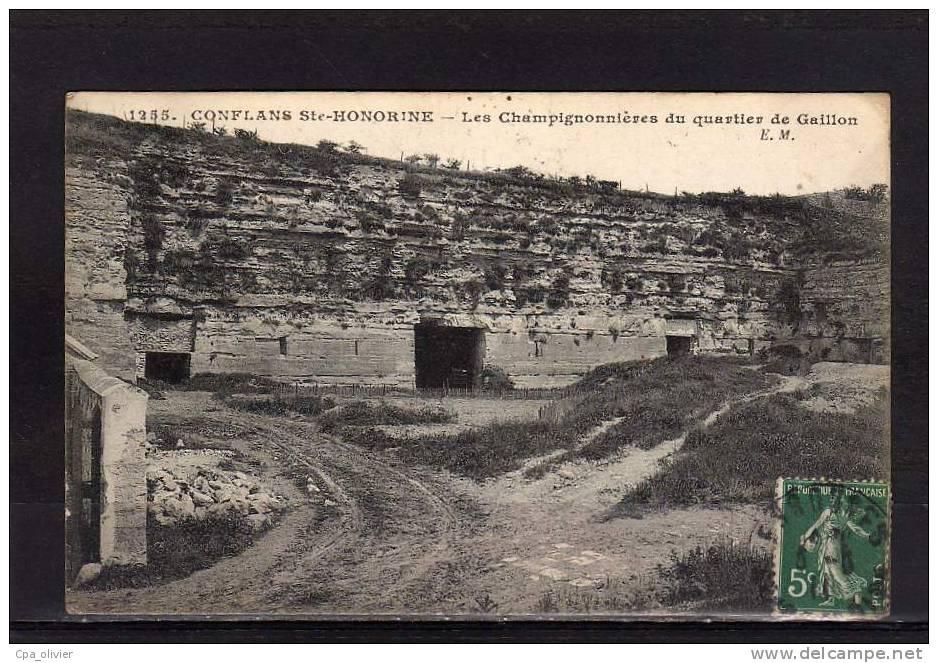78 CONFLANS STE HONORINE Champignonnière Du Quartier De Gaillon, Champignons De Paris, Ed EM Malcuit 1255, 1911 - Conflans Saint Honorine