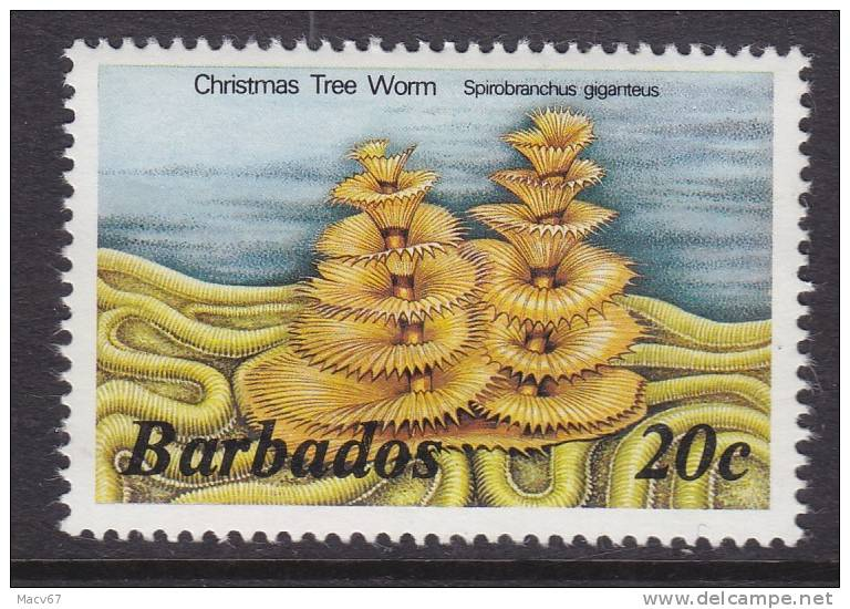 Barbados 645     **  MARINE LIFE  CHRISTMAS WORM - Barbados (1966-...)
