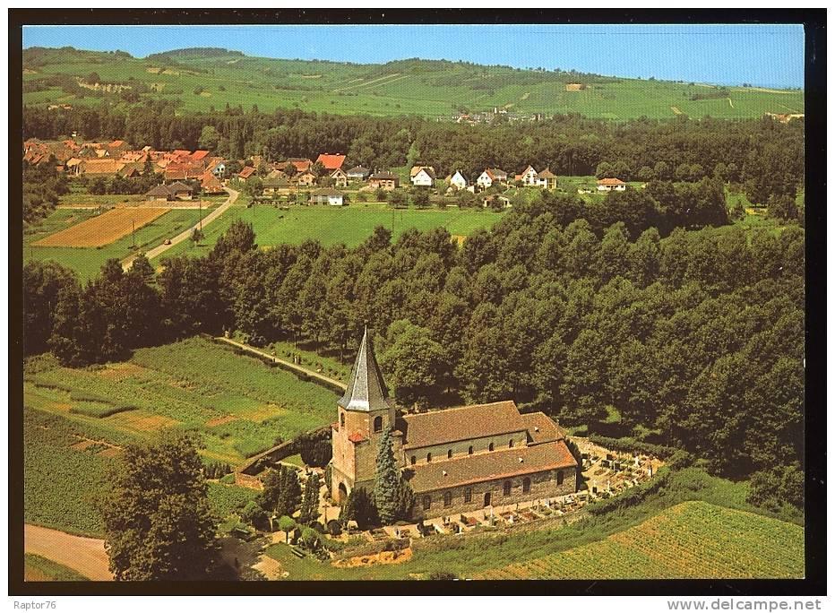 CPM  AVOLSHEIM  Vue Aérienne De L'Eglise De DOMPETER Et Du Tilleul Millénaire - France