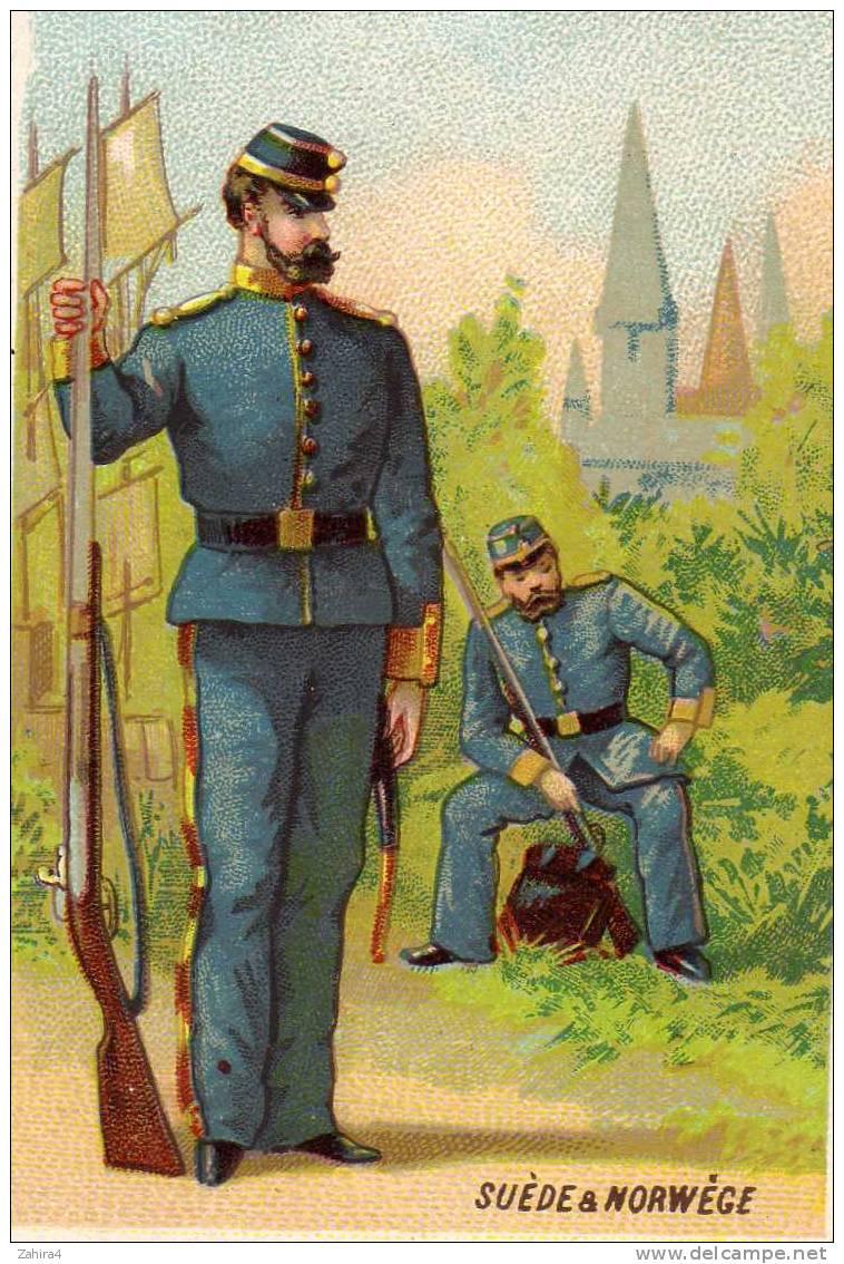 Chicorée à La Belle Jardiniere - Soldat De Suede & Norwege - Cromos