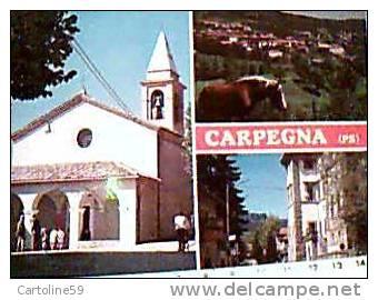 CARPEGNA PAESE PESARO VEDUTE  CHIESA E CAVALLO HORSE VB1990 CM7906 - Pesaro