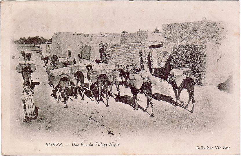 ALGERIE / Biskra / Une Rue Du Village Nègre / Précurseur - Biskra