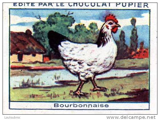 CHROMO CHOCOLAT PUPIER LES POULES BOURBONNAISE - Chromos