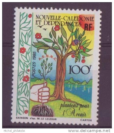 NOUVELLE-CALADONIE N° 509** NEUF  SANS CHARNIERE   ARBRE - Nueva Caledonia