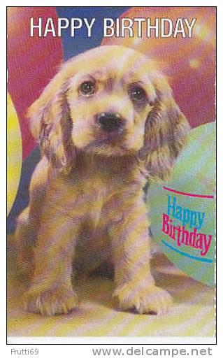 DOG - AK 17663 Happy Birthday - Chiens