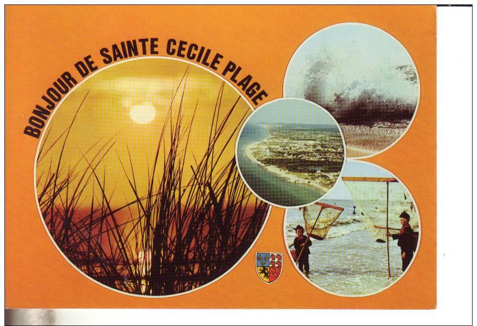 Bonjour De Sainte Cecile Plage - Non Classificati