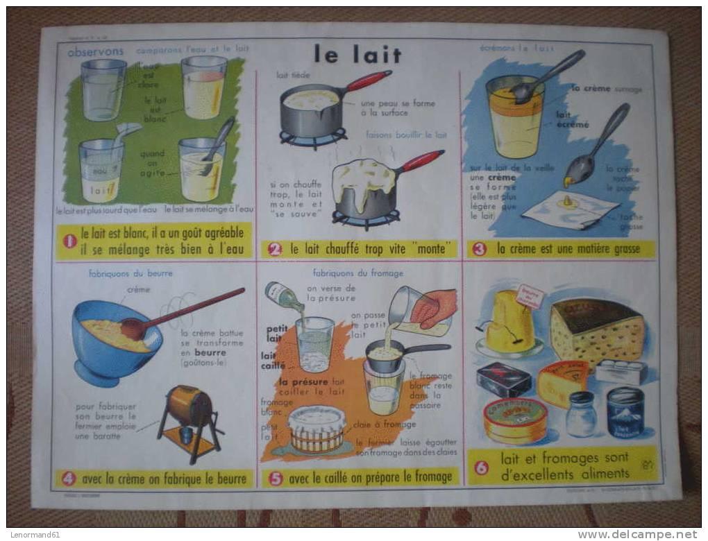 carte affiche scolaire ancienne recto l oeuf de poule verso le lait editions m d i. Black Bedroom Furniture Sets. Home Design Ideas