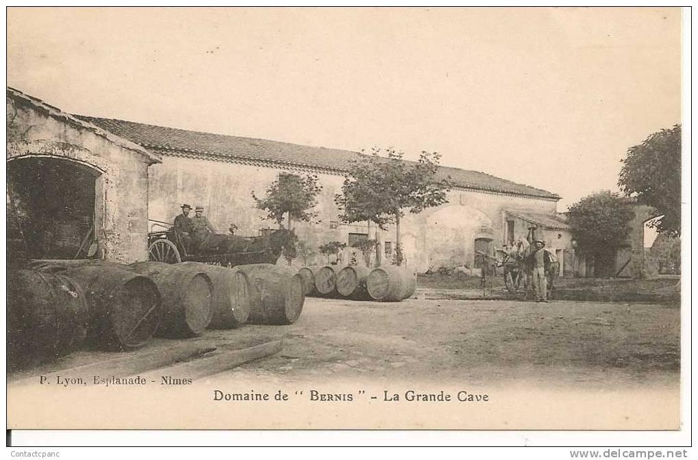 "BERNIS ( 30 ) - Domaine De "" Bernis ""  - La Grande Cave - Unclassified"
