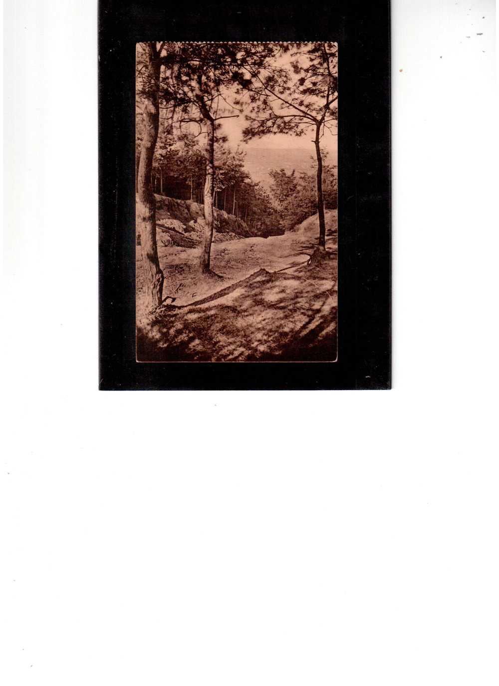 2324  -   MONT DE L´ENCLUS/KLUISBERG    -   ENTREE DU TROU DE L´ENFER   -   NON VOYAGE - Mont-de-l'Enclus