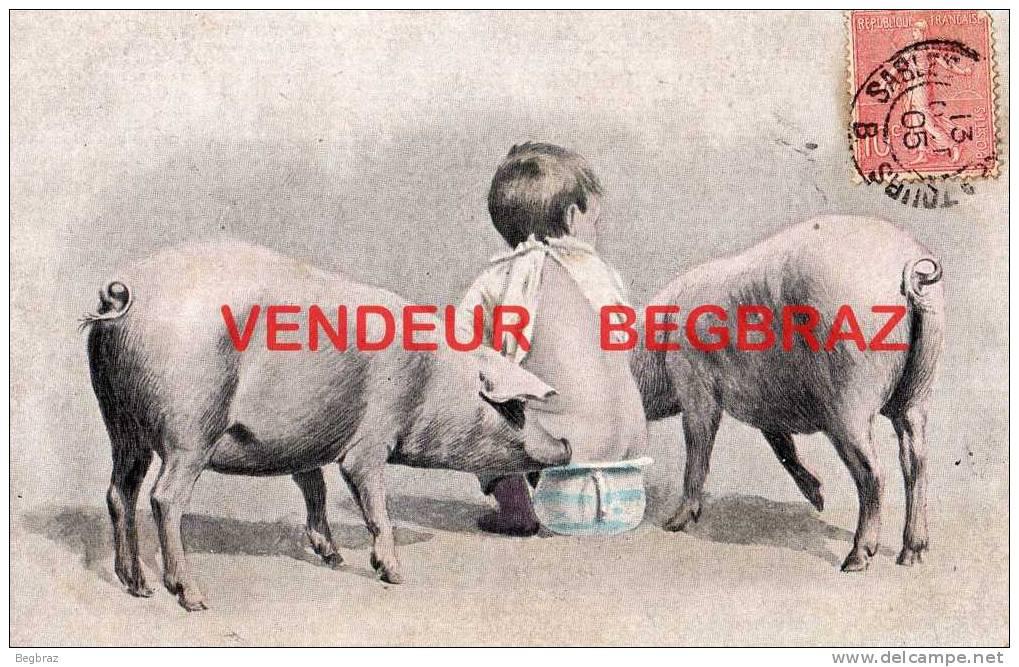 COCHON ENFANT POT DE CHAMBRE   HUMOUR  BONNE ANNEE - Varkens