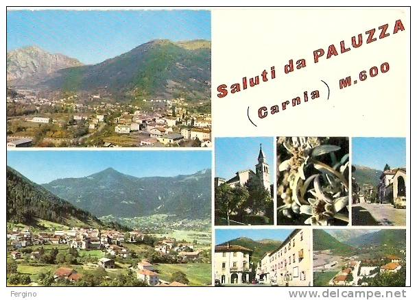 8850 - PALUZZA (UDINE) - Vedutine - Udine