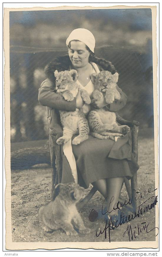 Real Photo Femme Avec 3 Lionceaux, Lions - Lions