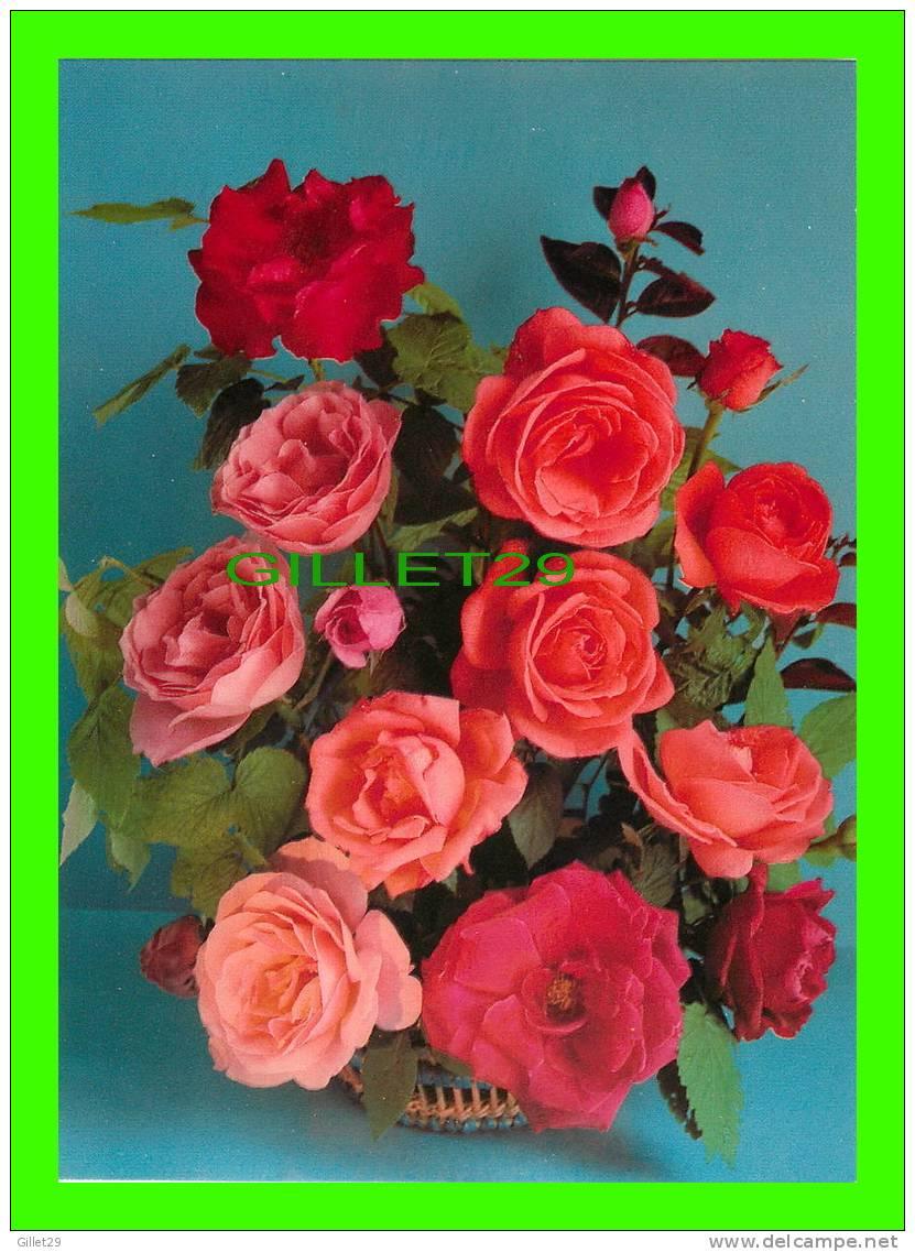 fleurs bouquet de roses rouge photo p p kodtenko. Black Bedroom Furniture Sets. Home Design Ideas
