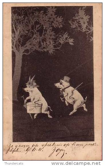 ILLUSTRATEUR ESPINASSE  ** 1900 !!! ** COCHON COCHONS HUMANISEE  ** ARTIST SIGNED ESPINASSE PIG HUMANISED PIGS - Cochons
