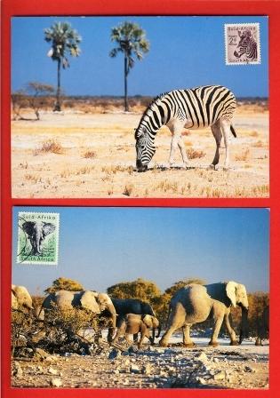 RSA 1954 Maxicards Elephant & Zebra Stampnrs 242+244 - Stamps