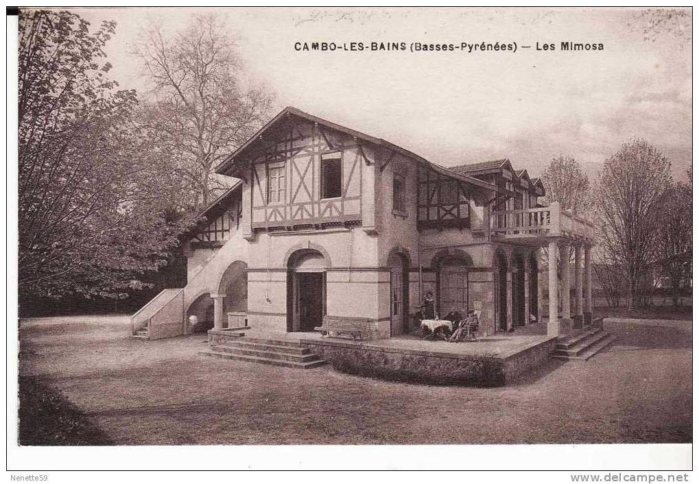 CAMBO LES BAINS - Les Mimosa Petite Animation - Cambo-les-Bains