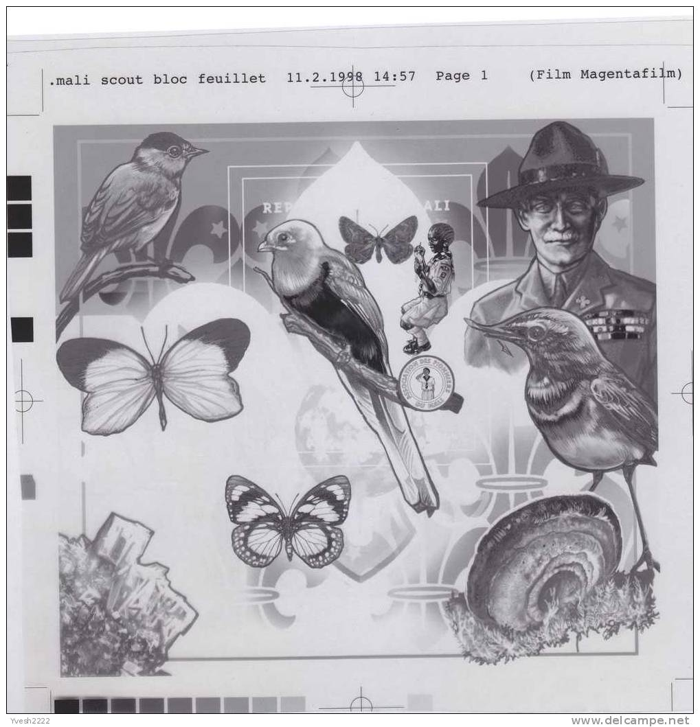 Mali 1997. Set Of 4 Offset Printing Films: Black, Yellow, Cyan & Magenta. Butterfly, Birds, Mineral, Baden Powell, Snail - Scouting