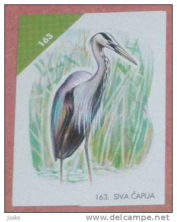 GREY HERON ( Croatia Sticker ) Ardee Garza Reiher Airone Bird Oiseau Ave Pajaro Vogel Uccello Birds -Croatie Autocollant - Stickers