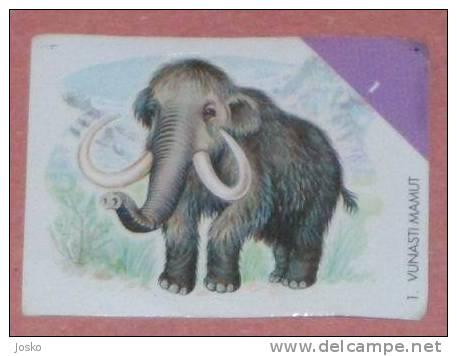 MAMMOTH ( Croatia Sticker )  Mammouth Mamut Mammut Prehistory Animal Prehistoire Animaux  - Croatie Autocollant - Unclassified