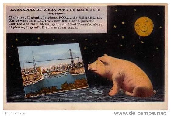 CPA COCHON LUNE  LA SARDINE DU VIEUX PORT DE MARSEILLE ** PIG MOON - Cochons