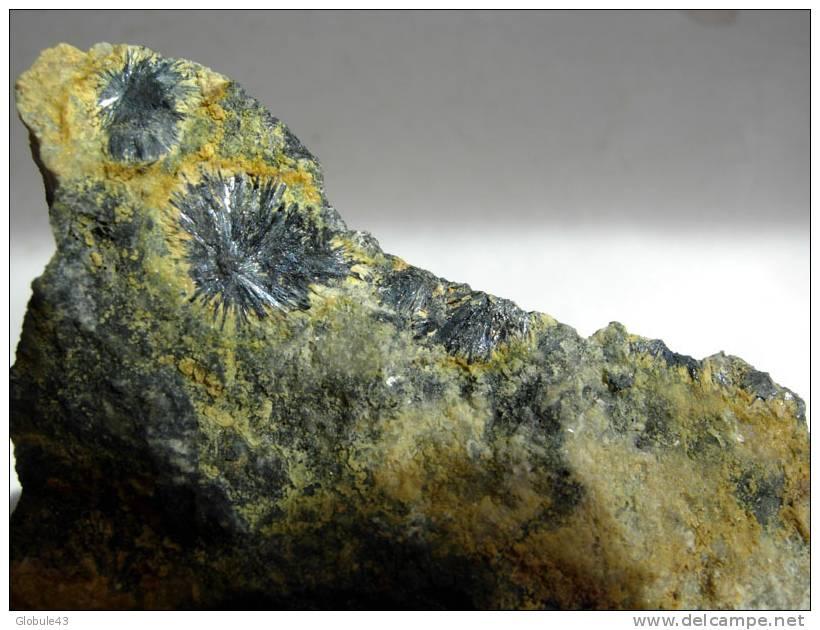 STIBINE En TOUFFE RAYONNANTE Bordée De STIBICONITE 6 X 8 CM REGION DE MASSIAC - Mineralien