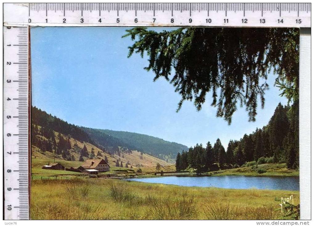 La Vallée De Chajoux  -  Entre Gérardmer Et La Bresse -  N° 10 8870 - Saint Die