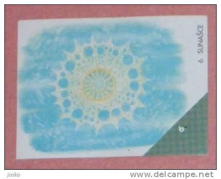 SUNASCE ( Croatia Sticker )  Undesea Underwater Sea Marine Life Fish Poisson Croatie Autocollant - Stickers