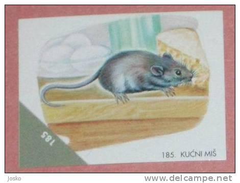 MOUSE ( Croatia Sticker ) Souris Maus Ratón Topo Muis Mouses Sourise Animal Animals Fauna Animaux - Croatie Autocollant - Stickers