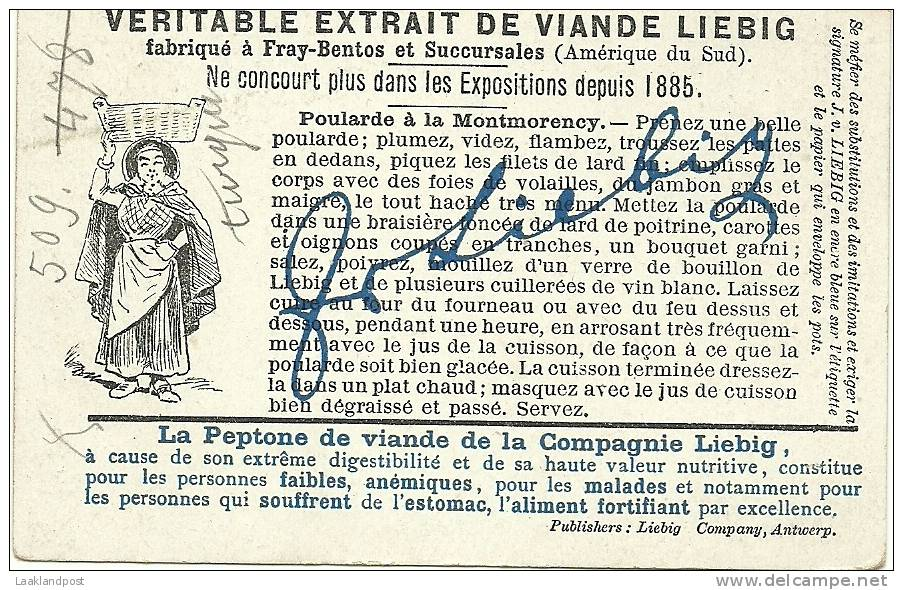 BELGIUM 1890 TRADE CARD SCATING MILL VIANDE - Reclame