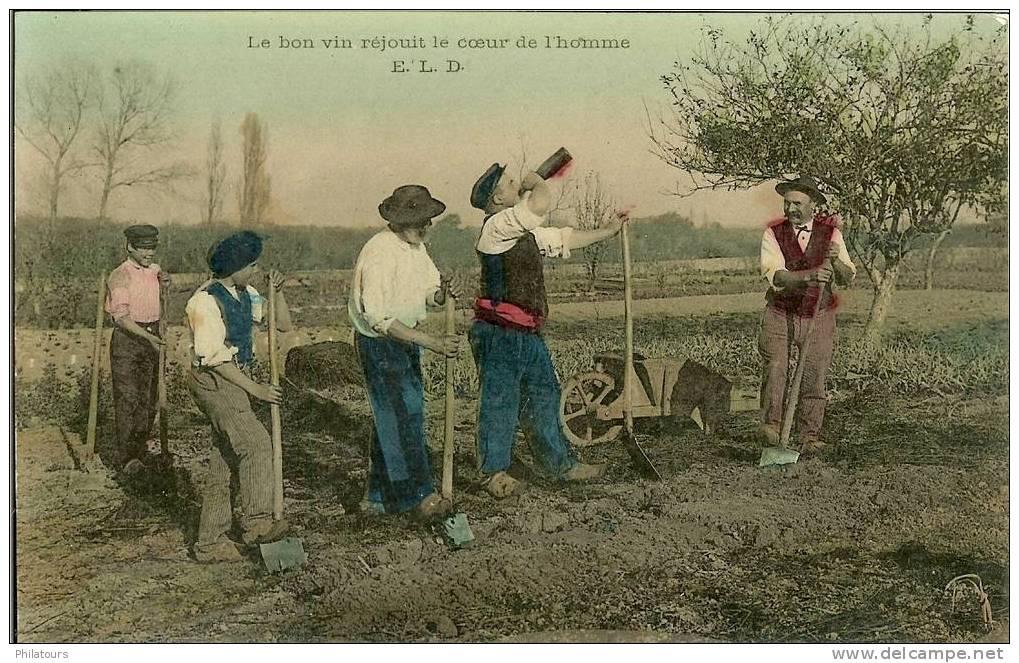 AGRICULTURE / LE BON VIN REJOUIT LE COEUR DE L'HOMME - Cultures