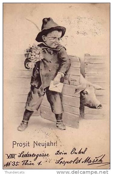 CPA COCHON COCHONS ENFANT GARCON  ** CHILD BOY PIG PIGS **  VARKEN - Cochons