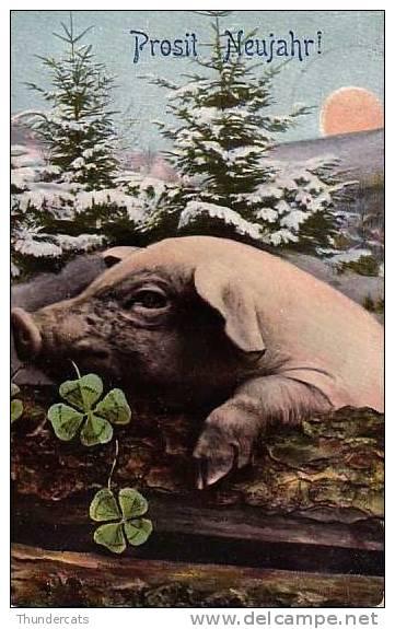 CPA COCHON COCHONS  ** PIG PIGS **  VARKEN - Cochons