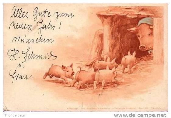 CPA CARTE LITHO PRECURSEUR 1899 COCHON COCHONS MERE & ENFANTS  ** LITHO PIG PIGS MOTHER & CHILDREN  **  THEO STROEFFER'S - Cochons