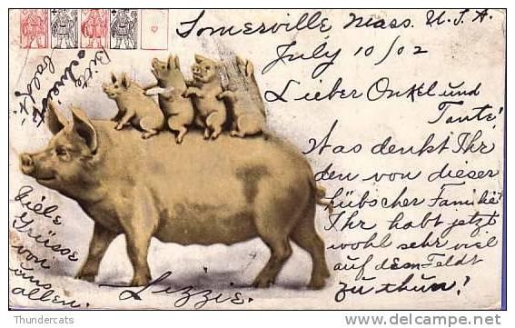 CPA CARTE LITHO COCHON COCHONS JEUX DE CARTES ** LITHO CARD PIG PIGS CARDS  **  VARKEN ** - Cochons