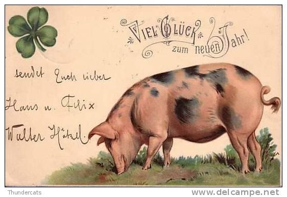 CPA COCHON COCHONS CARTE LITHO ** LITHO CARD PIG PIGS **  VARKEN - Cochons