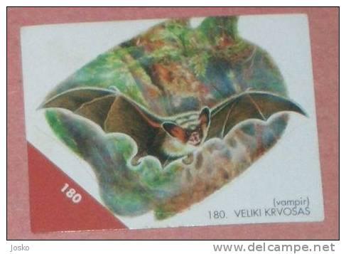 BAT ( Croatia Sticker ) Chauve-souris Sourise Fledermaus Murciélago Pipistrello Cave Speleology Speleologie Grotte Caves - Unclassified