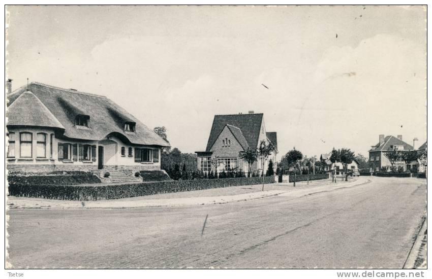 Hove - Mortselsesteenweg -1956 - Hove
