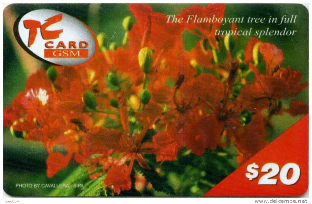 ST.MAARTEN-PREPAID CELLULAR CARD-THE FLAMBOYANT - Telefoonkaarten