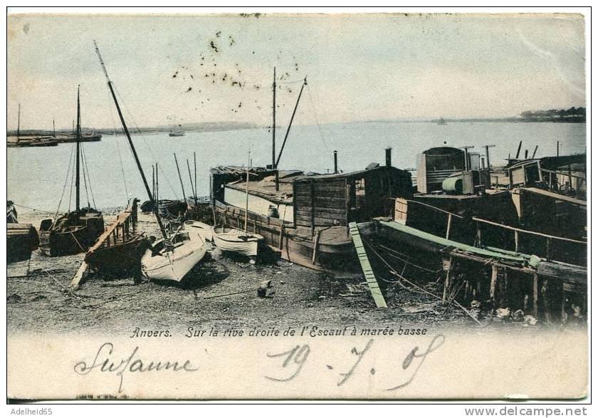 Antwerpen Anvers Sur La Rive Droite à Marée Basse Rechteroever Bij Eb 1909 - Antwerpen