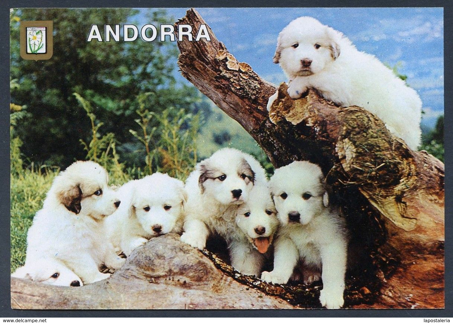 Valls D´Andorra. Ed. Escudo De Oro - M.C. Iscla Nº 499. Nueva. Escudo Flor De Nieve. - Andorra