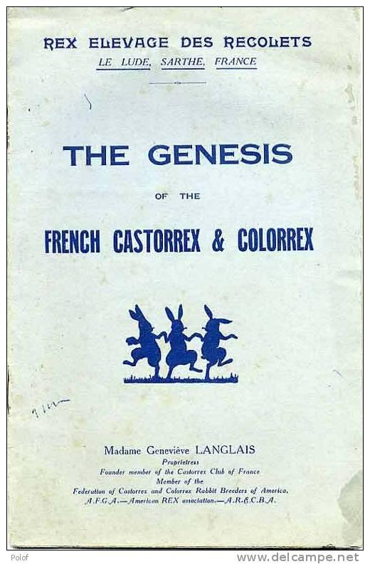 LAPIN -  Rex Elevage Des Recolets - The Genesis Of The French Castorrex & Colorrex (VP 348) - Sciences & Technique