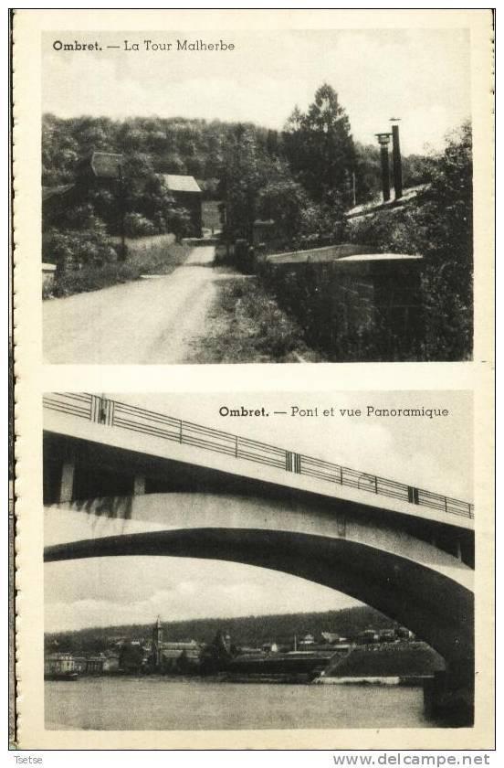 Ombret - 2 Vues ( La Tour Malherbe Et Pont Et Vue Panoramique ) - Ans