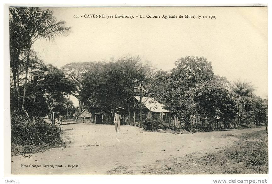 CAYENNE- LA  COLONIE  AGRICOLE  DE  MONTJOLY  N283 - Cayenne