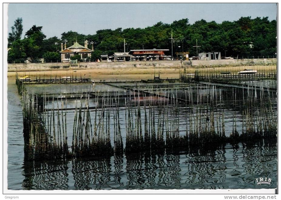"33 : Bassin D ´ ARCACHON , Cap Ferret , Les Parcs à Huitres , Restaurant "" L'escale ""  CPSM 10 X 15 - France"